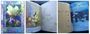 Marg's Book